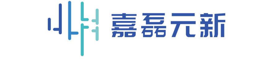 广州嘉磊元新信息科技有限公司
